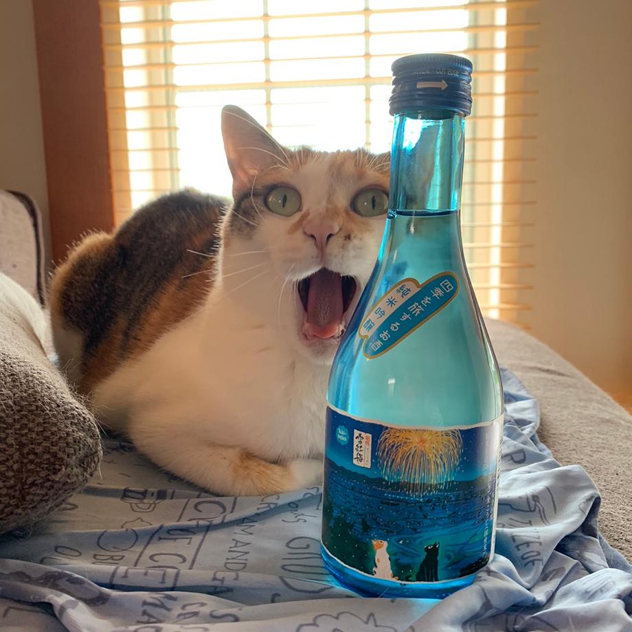 雪紅梅 四季を旅するお酒 猫とお酒の写真コンテスト サンプル